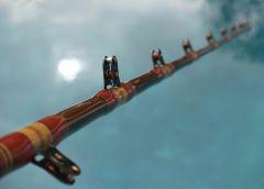 Neptune Spiral Roller Rod