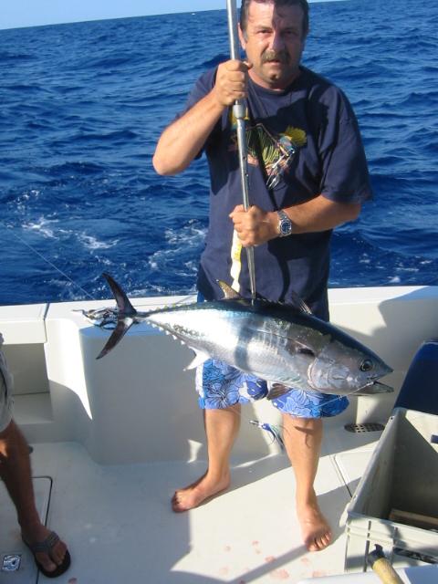 A little red tuna