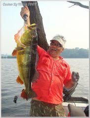 Fish Peacock Bass Rio Juma Amazon