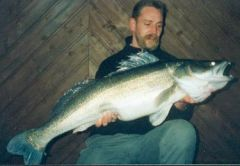 European Walleye 10,5Kg