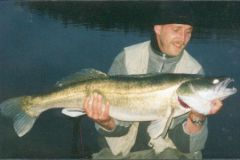 European Walleye10Kg