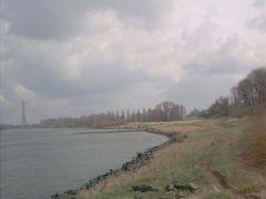 Rhine - River